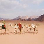 Karawane in Jordanien