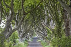 Augen-Blicke: Irland