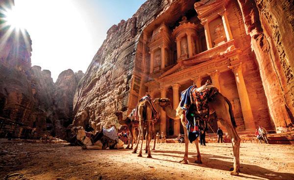 Kamele vor der Felsenstadt Petra