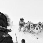 """Fotowettbewerb Abenteuer, 20. Platz: Andreas Schlager, """"Grönland"""""""