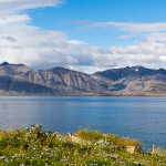 Blick auf den Fjord, Island, © Katrin Schmidt