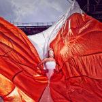 Jochen Kohl: Fly, Baby, Fly