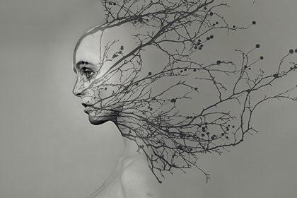 Porträt, © Jamari Lior