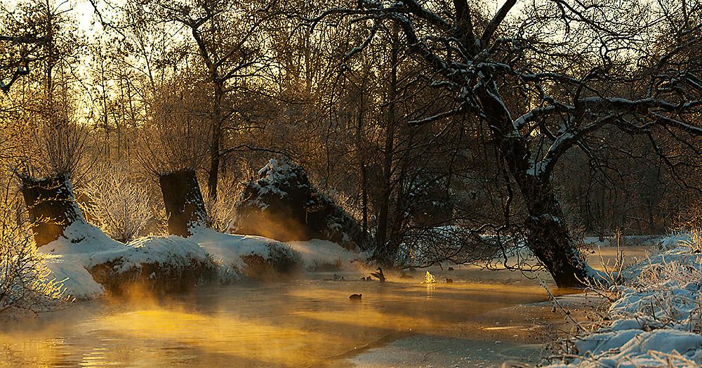 Niederrhein, © Katrin Schmidt