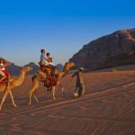Jordanien - Kamele im Wadi Rum