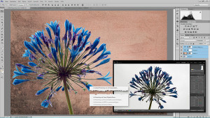 Lightroom & Photoshop mit Peter Hoffmann