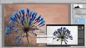 Lightroom & Photoshop mit Peter Hoffmann