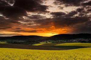 Lebende Landschaften - © Uwe Statz