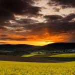 Lebende Landschaften © Uwe Statz