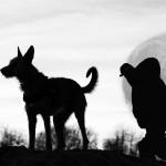 """Fotowettbewerb Abenteuer, 1. Platz: Cornelia Müller, """"Wolfsmond"""""""