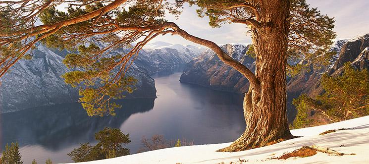 Aurlandsfjord, Nowegen, © Gereon Roemer