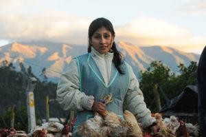 Alltag in luftiger Höhe: Wochenmarkt in den Bergen Otavalo, Ecuador von Daniel Noll, Uncornered Market