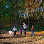 Wandern mit Kindern, © Katrin Schmidt
