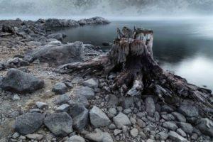 Naturfotografie im Winter (c) Anouchka Olszewski & Peter Giefer
