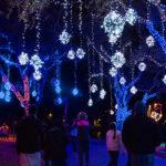 Festival of Lights im Moody Gardens © Moody Gardens