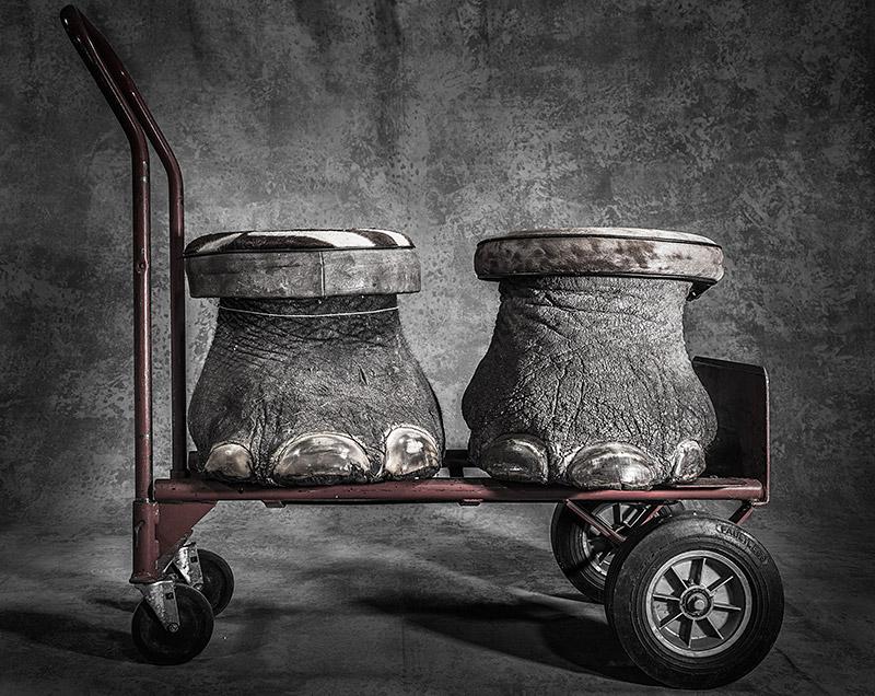 Konfisziert, ©Britta Jaschinski