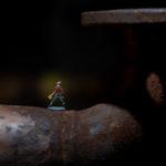intermezzo 2019, © Klaus Wohlmann, Makrofotografie