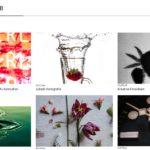 FUJIFILM - Kreative Fotoideen Webseite