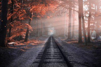 Nebel © Владимир Харитонов auf Pixabay