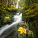 Gollinger Wasserfall; Österreich - © Daniel Trippolt