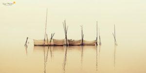 Frühling an der Mecklenburger Seenplatte (c) Wiltrud Schwantz