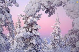 Winter am Polarkreis (c) Wiltrud Schwantz