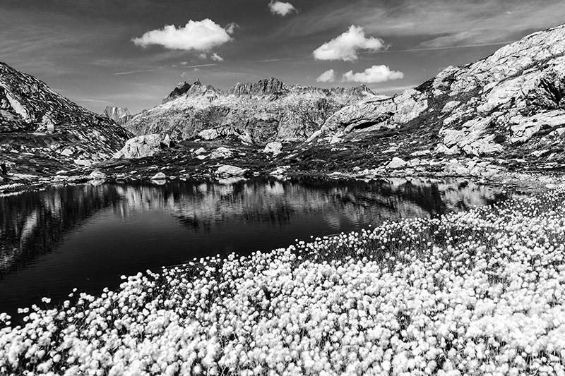 Perfekte Schwarzweißfotos mit Lightroom und Photoshop, © Maike Jarsetz
