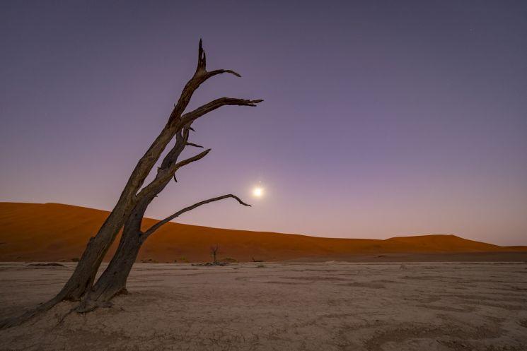 Namibia (c) Adrian Rohnfelder - powered by Olympus